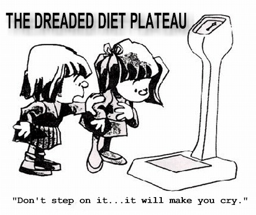 Image result for weight plateau
