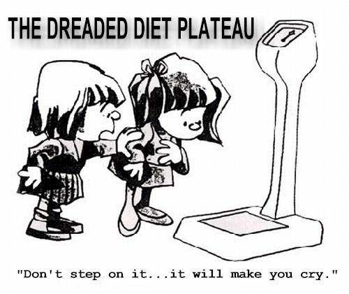 Diet chen sheng hao pu-erh tea weight loss stories
